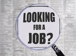 MySaudiJobs One of the Best Platform where you can Find Careers     Pinterest