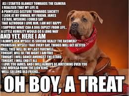 Memes Vault Depression Dog Memes via Relatably.com