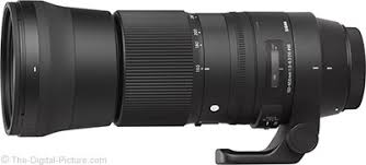 Sigma 150-600mm f/5-6.3 DG OS HSM C Lens Review