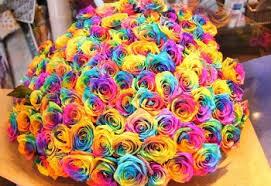 How Florists Dye <b>Flowers</b> - ProFlowers Blog