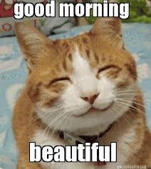 Meme Maker - good morning beautiful Meme Maker! via Relatably.com