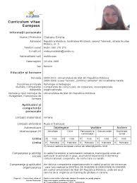 cv european model doc sample customer service resume cv european model doc cv templates and guidelines europass model cv curriculum vitae european r a 2