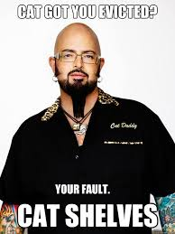 Jackson Galaxy memes | quickmeme via Relatably.com