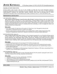 sales account executive resume sample account executive resume sample