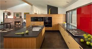 amazing bamboo kitchen cabinets world kitchen ideas world kitchen ideas also bamboo kitchen amazing bamboo furniture design ideas