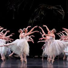 All you need to know about <b>Tchaikovsky's Swan</b> Lake - Reader's ...
