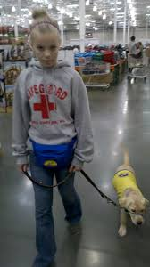 paws for independence costco we ventured forth confidence haddie too my girl had her stop and sit throughout our journey but it was too crowded for a down command