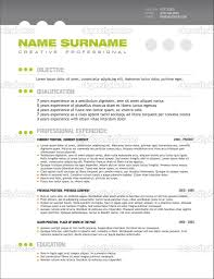 professional resume layout getessay biz 10 images of professional resume layout