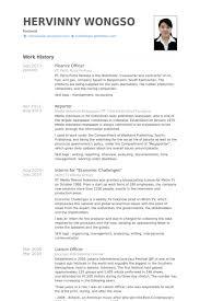 finance officer resume samples   visualcv resume samples databasefinance officer resume samples