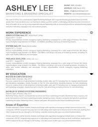 resume templates professional profile experience template 79 extraordinary resume template word templates