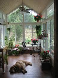 doors indoor t decoration ideas astonishing diy plant stand home decorators promo code cheap amazing office plants