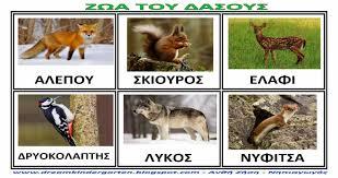 Αποτέλεσμα εικόνας για εικονες ζώα