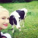 Da Madonna a Gwen Stefani: le star che non amano l'abbronzatura (foto - pallida5-150x150