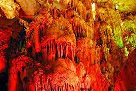 Trần động có nhiều vân đá, nhũ đá rủ xuống lấp lánh nhiều màu sắc trông như những rễ cây lớn. Trên trần có nhiều dơi và chim cư trú.