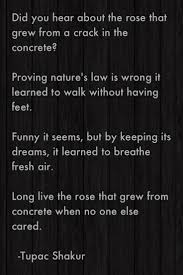 best images about tupac shakur pac quotes real the rose that grew from concrete by tupac shakur my inspiration for this school