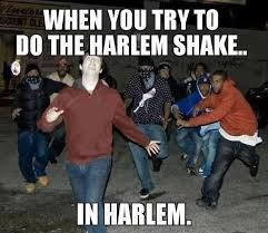 A Funny Harlem Shake Photo Meme | The DJ Stone Crazy Spot via Relatably.com