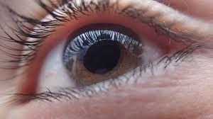 Resultat d'imatges de glaucoma