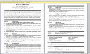 Resume Format Example For Job Sample20of20job20resume20format203 ... resume examples sample chronological resume for assistant director objective with education and involvement or related