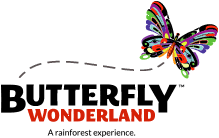 <b>Butterfly</b> Wonderland - A Rainforest Experience