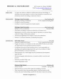 Unique Esl Tutor Sample Resume Resume Sample