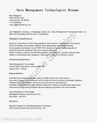 gis administrator sample resume example of compare and contrast resume for insurance agent insurance underwriter resume resume image workforce management picture analyst resume sle data