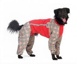 Тузик <b>Комбинезон</b> для собак Мексиканская голая Д холодный ...