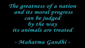 Animal Cruelty Quotes Gandhi. QuotesGram
