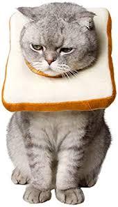Amakunft Adjustable Cat E-Collar, Cute Toast Neck ... - Amazon.com