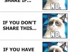 Grumpy Cat Meme | WeKnowMemes via Relatably.com