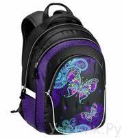 «<b>Школьный рюкзак Erich Krause</b> (Эрих Краузе) Magic Butterfly ...