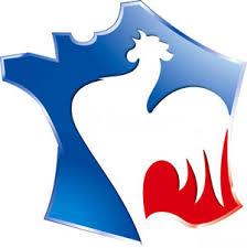 """Résultat de recherche d'images pour """"logo france"""""""