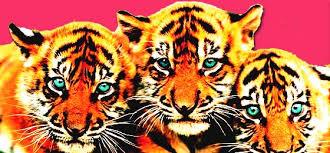 Resultado de imagen de cabrera infante Tres tristes tigres