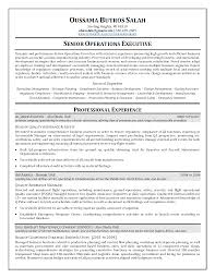 resumer sample college resume sample format high school resume resumer sample resume sample coo chief operating officer operations resume sample coo chief operating officer operations