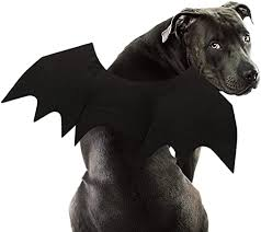 RYPET Dog Bat Costume - Halloween Pet Costume ... - Amazon.com