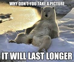 Carefree bear memes   quickmeme via Relatably.com
