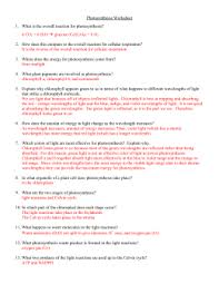 photosynthesis worksheet   what is the overall reaction forphotosynthesis worksheet
