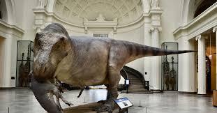 Sue the <b>T</b>. <b>Rex</b> gets life-like model to match skeleton - Chicago Sun ...