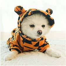 NACOCO <b>Dog</b> Tiger Halloween <b>Costume Pet Cosplay</b> Tiger <b>Clothes</b> ...
