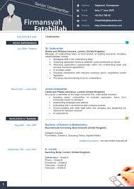 a cv in europass format service resume a cv in europass format curriculum vitae o cv contoh curriculum vitae
