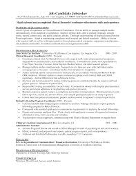 entry level medical writer resume summary isabellelancrayus splendid basic resume templates hloomcom breakupus licious information technology it resume sample resume genius