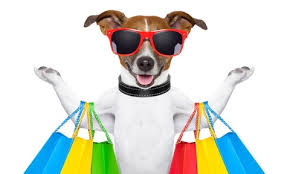 pet stores Colorado