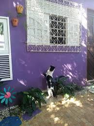 Hostel <b>Margo</b> (Бразилия Натал) - Booking.com