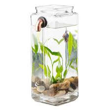no clean aquarium desktop aquarium office desk aquarium