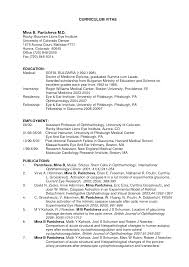 Us Resume Template 20 E Resume Template Electronic Format Cover