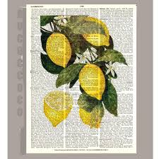 Lemon And Lime Kitchen Decor Lemon Illustration Etsy