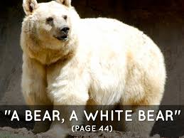 touching spirit bear essay papers algebra burstzv touching spirit bear essay papers