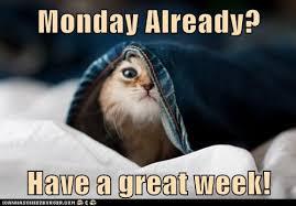 Bildergebnis für have a great week