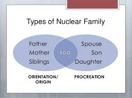 procreation family definition essay   essay for you  procreation family definition essay   image