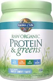 Raw Organic Protein & Greens Lightly Sweet - 488g - Garden of Life