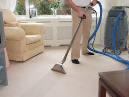 Professional Carpet Cleaners in Denver